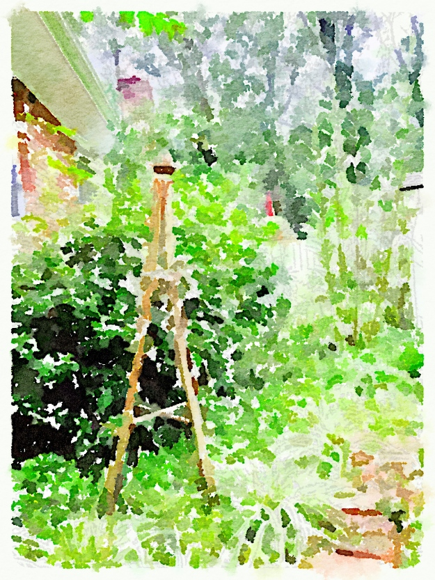 Garden tripod